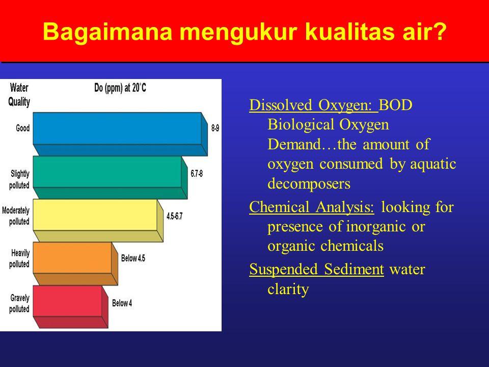 Bagaimana mengukur kualitas air