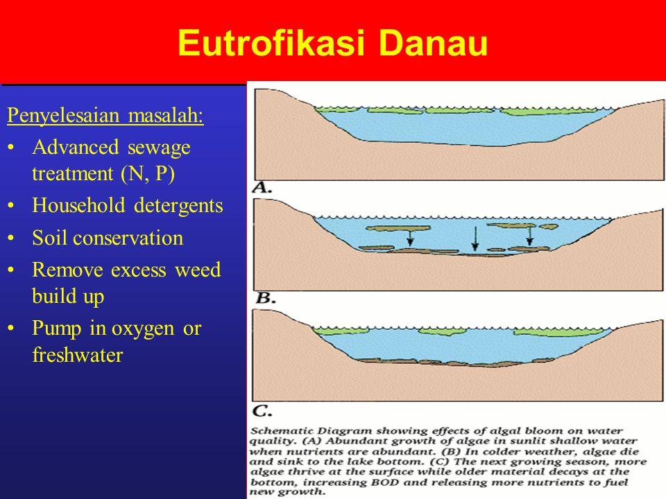 Eutrofikasi Danau Penyelesaian masalah: