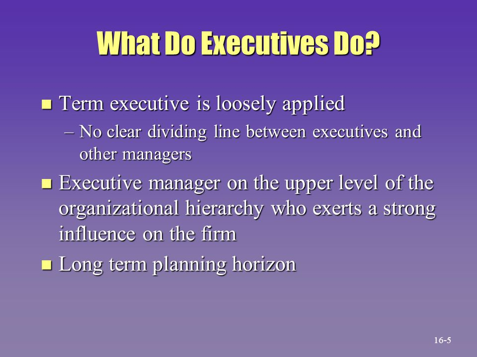 What Do Executives Do Term executive is loosely applied