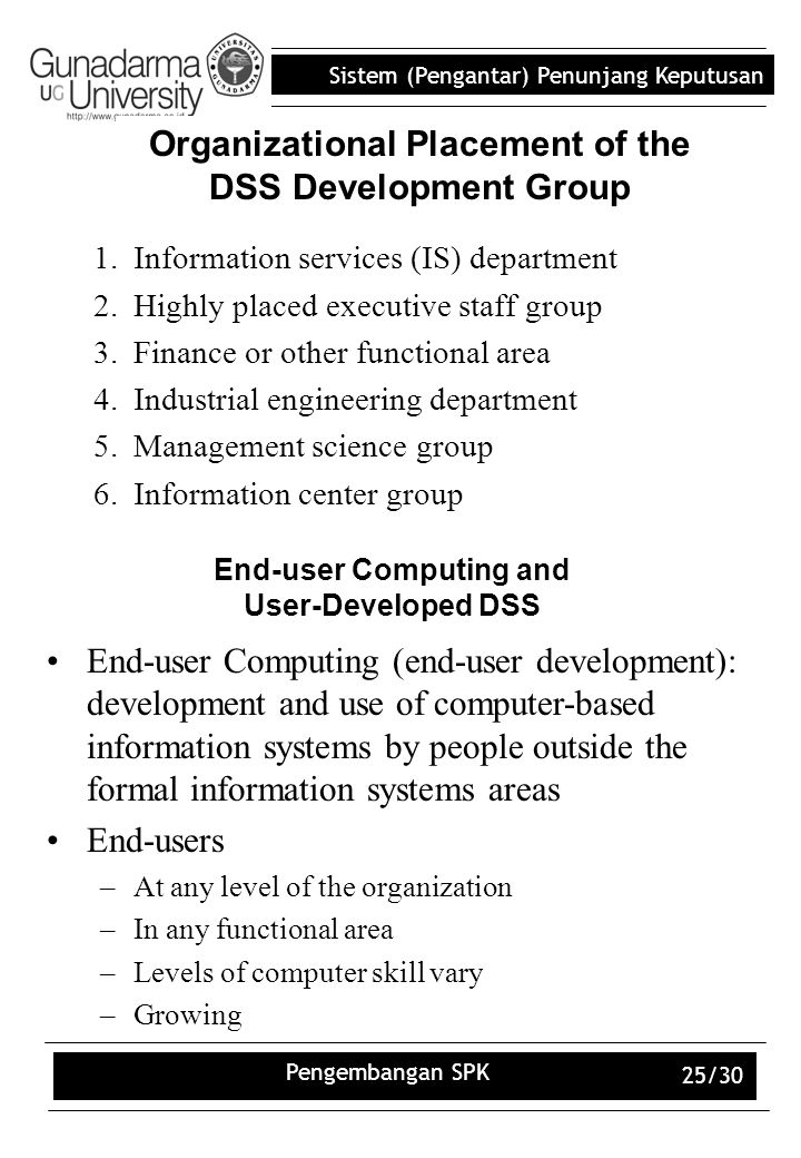 Organizational Placement of the DSS Development Group