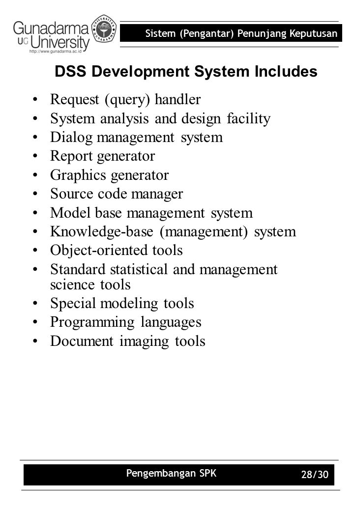 DSS Development System Includes