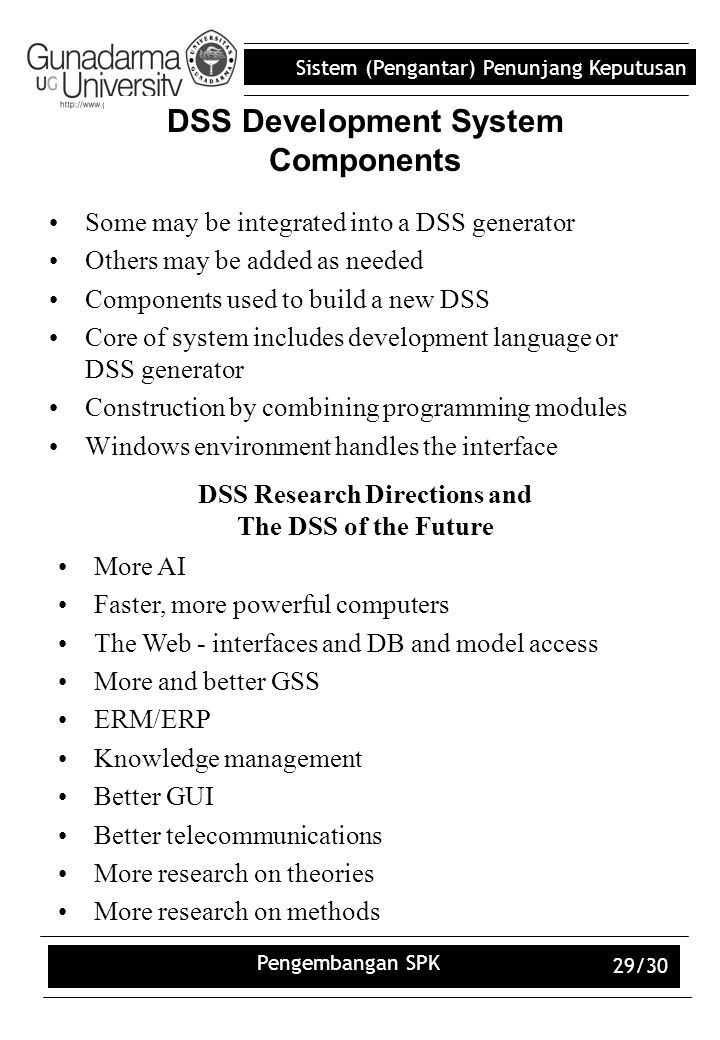 DSS Development System Components