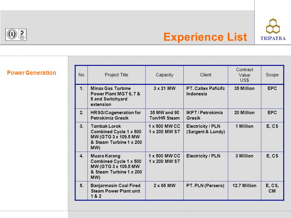 Experience List Power Generation No Project Title Capacity Client
