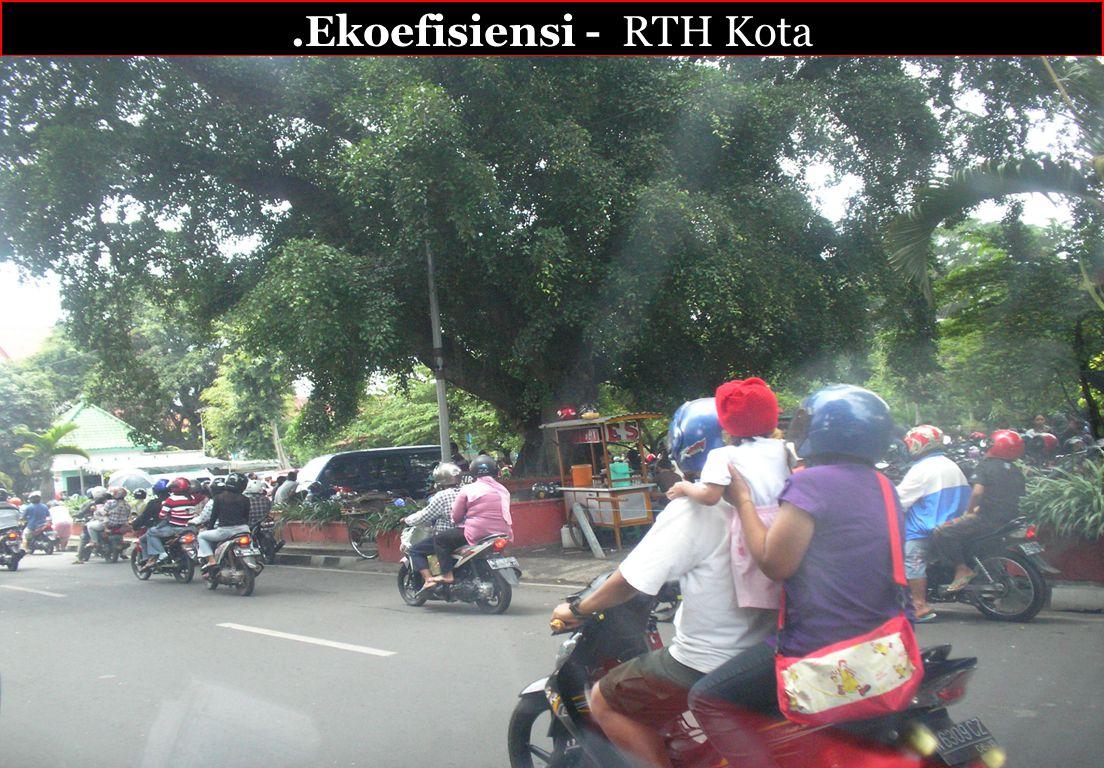 .Ekoefisiensi - RTH Kota