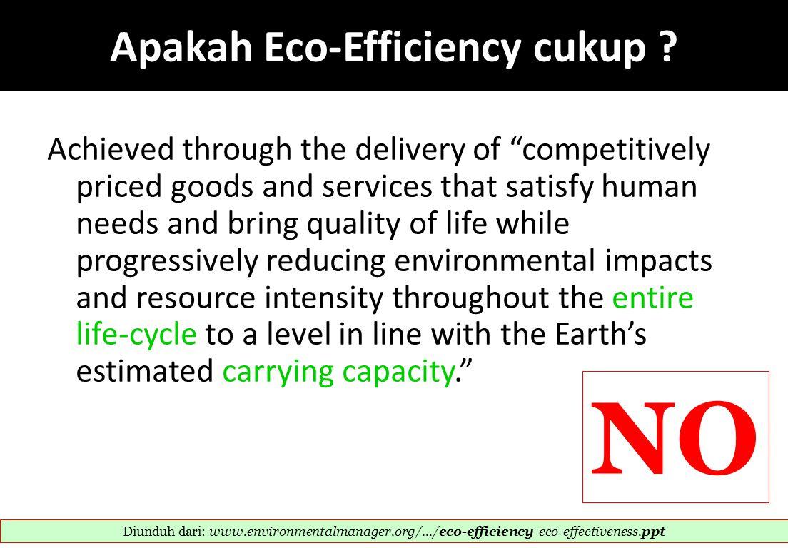 Apakah Eco-Efficiency cukup