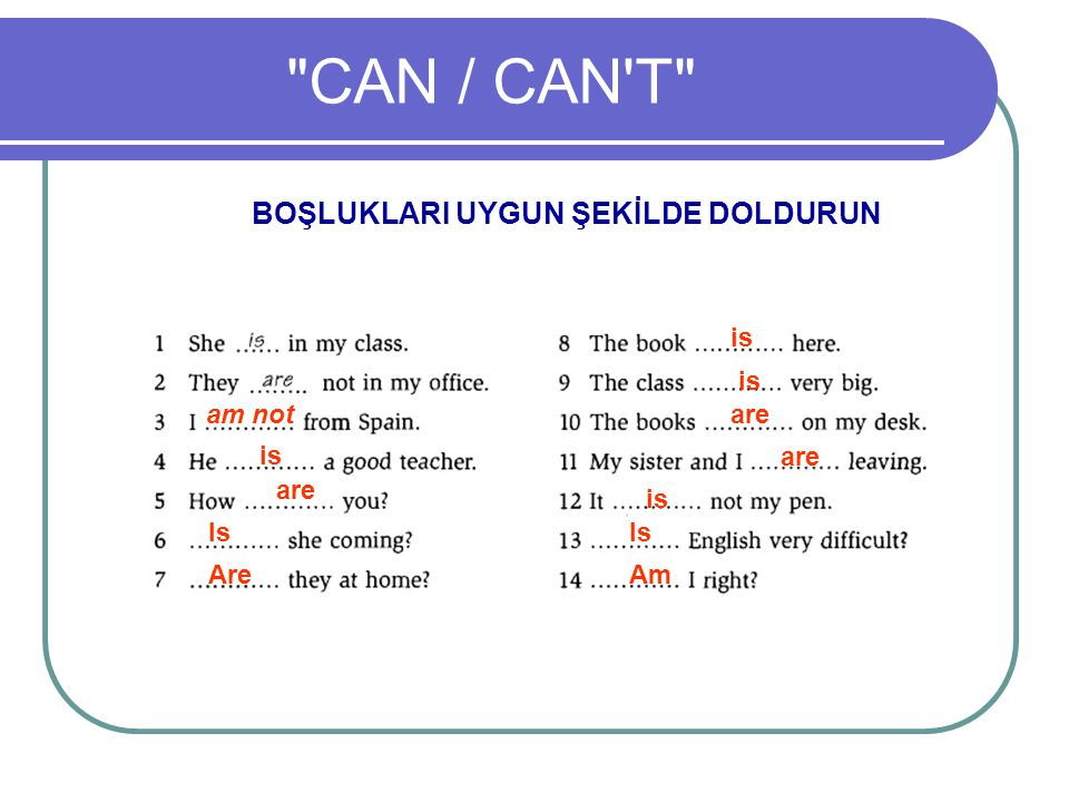 CAN / CAN T BOŞLUKLARI UYGUN ŞEKİLDE DOLDURUN is is am not are is