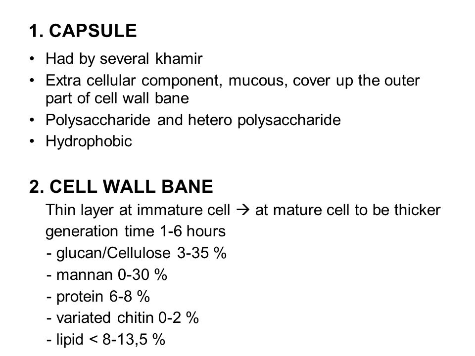 1. CAPSULE 2. CELL WALL BANE Had by several khamir