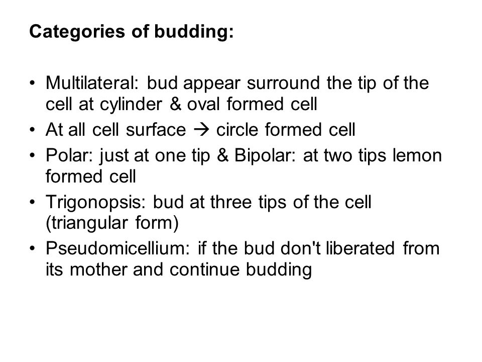 Categories of budding: