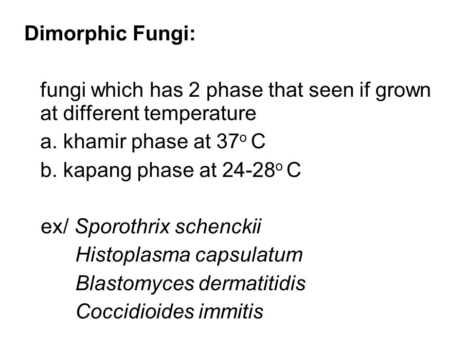 Dimorphic Fungi: fungi which has 2 phase that seen if grown at different temperature. a. khamir phase at 37o C.