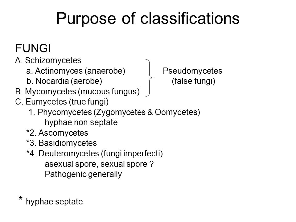 Purpose of classifications