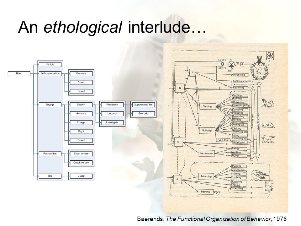 An ethological interlude…
