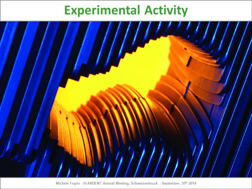 Experimental Activity