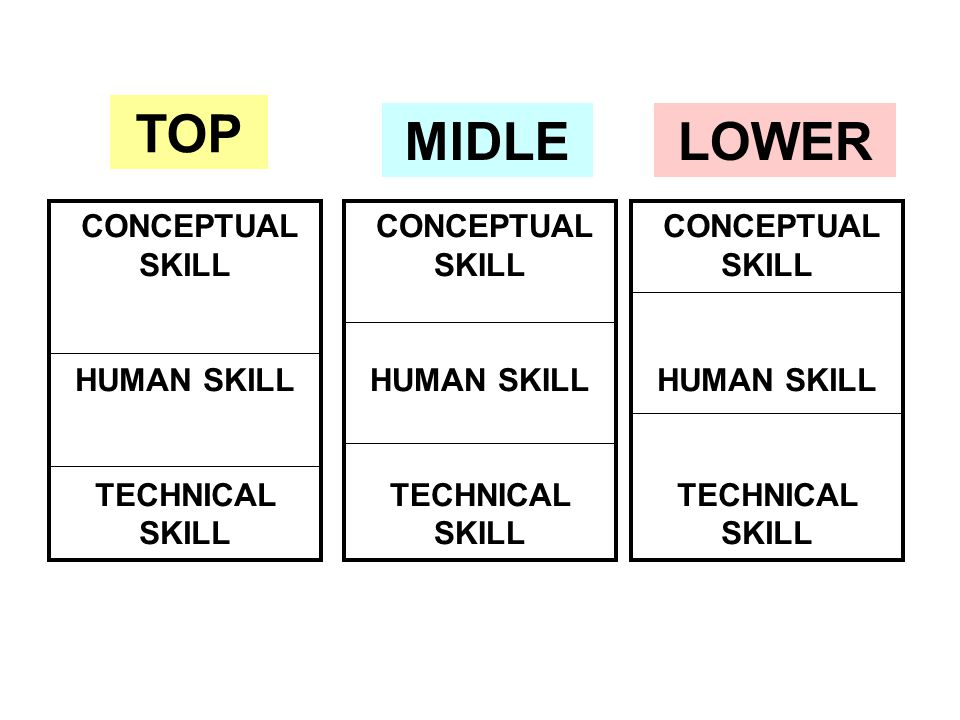 TOP MIDLE LOWER CONCEPTUAL SKILL HUMAN SKILL TECHNICAL SKILL