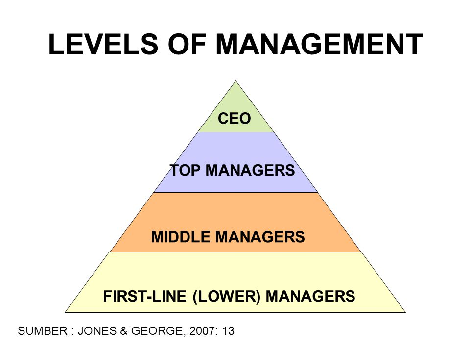LEVELS OF MANAGEMENT CEO TOP MANAGERS MIDDLE MANAGERS