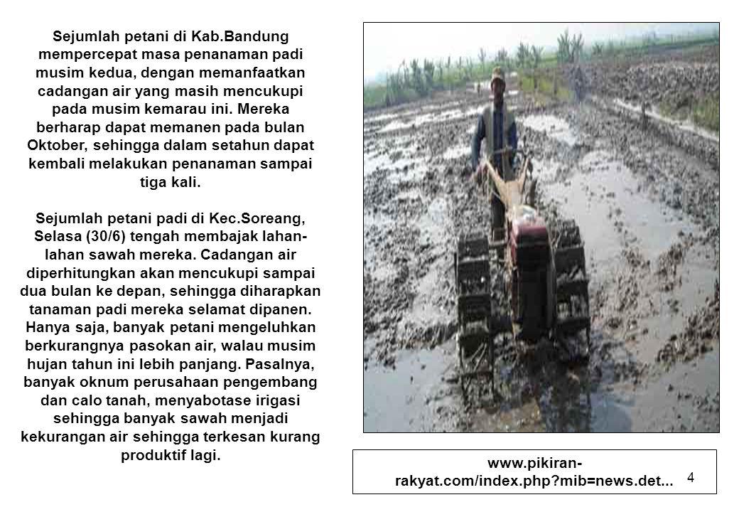Sejumlah petani di Kab.Bandung mempercepat masa penanaman padi musim kedua, dengan memanfaatkan cadangan air yang masih mencukupi pada musim kemarau ini. Mereka berharap dapat memanen pada bulan Oktober, sehingga dalam setahun dapat kembali melakukan penanaman sampai tiga kali.