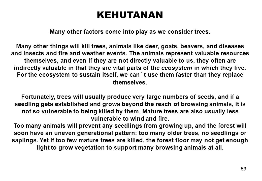 Many other factors come into play as we consider trees.
