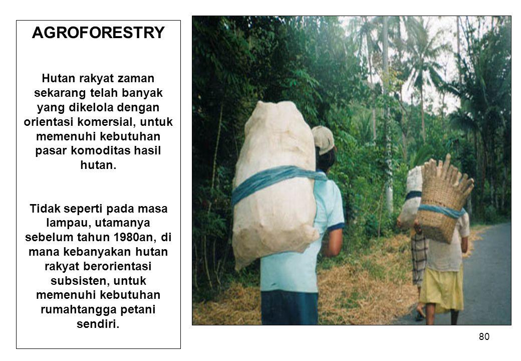 AGROFORESTRY Hutan rakyat zaman sekarang telah banyak yang dikelola dengan orientasi komersial, untuk memenuhi kebutuhan pasar komoditas hasil hutan.