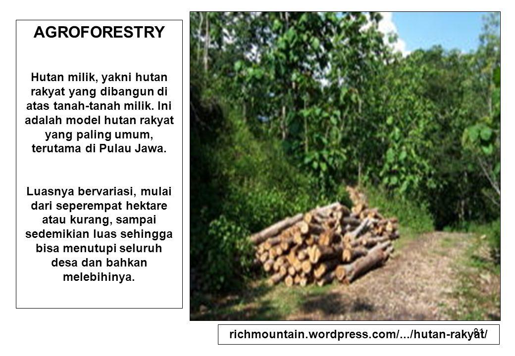 richmountain.wordpress.com/.../hutan-rakyat/