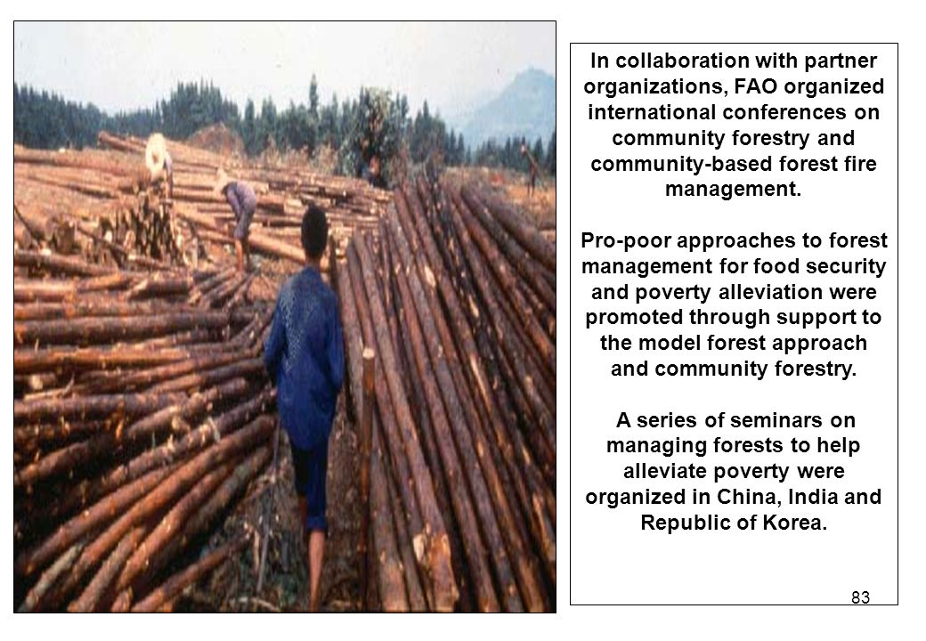 In collaboration with partner organizations, FAO organized international conferences on community forestry and community-based forest fire management.