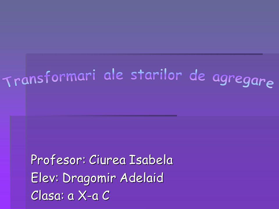 Profesor: Ciurea Isabela Elev: Dragomir Adelaid Clasa: a X-a C