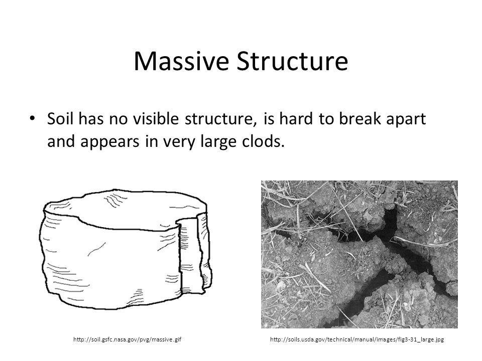 Massive Structure Soil has no visible structure, is hard to break apart and appears in very large clods.