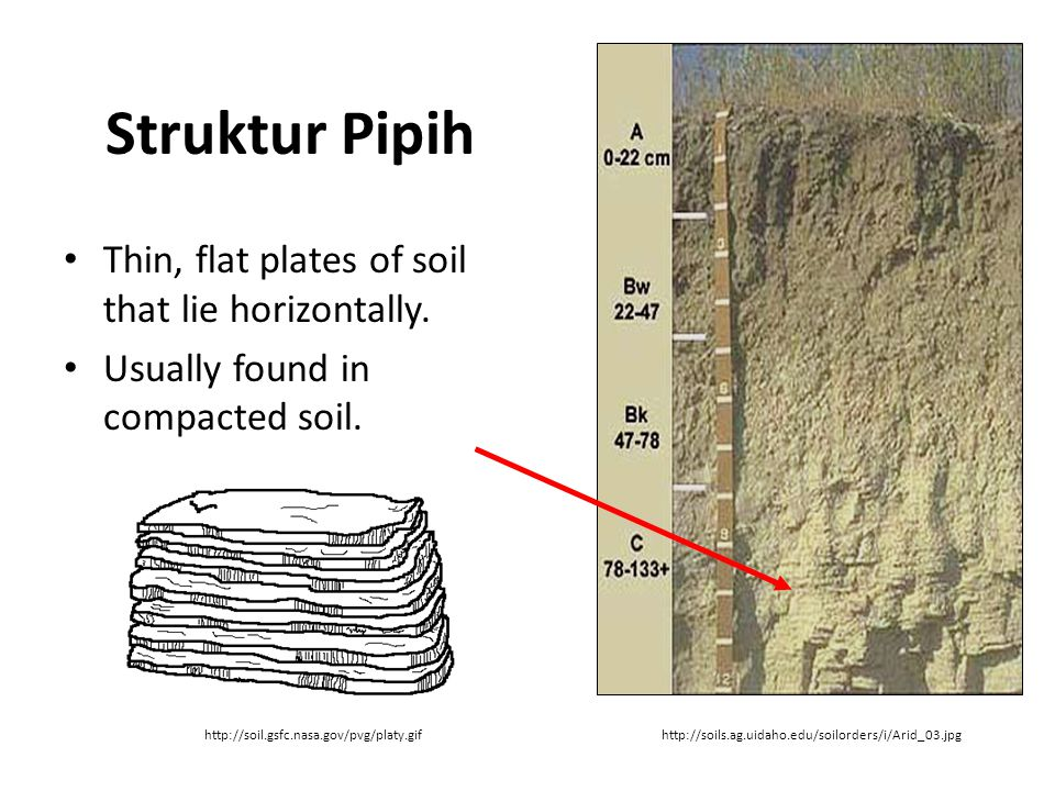 Struktur Pipih Thin, flat plates of soil that lie horizontally.