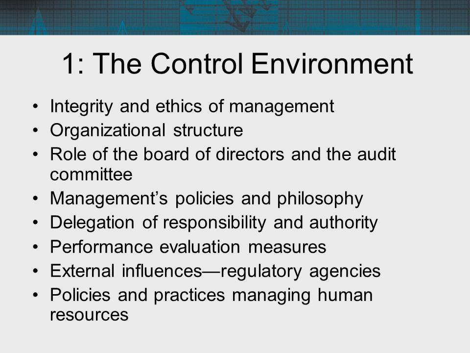 1: The Control Environment