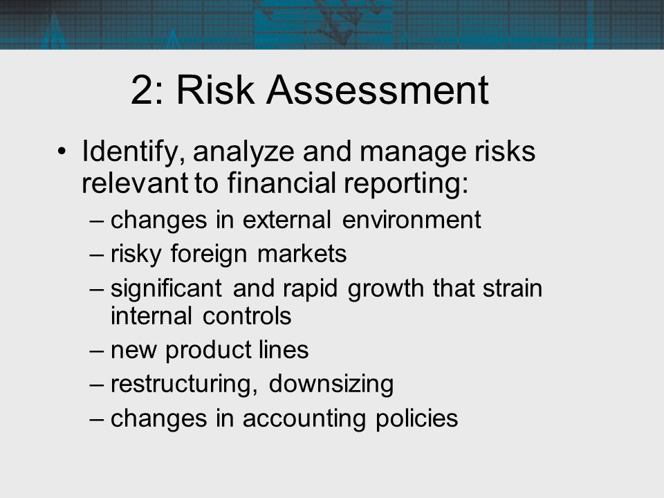 2: Risk Assessment Identify, analyze and manage risks relevant to financial reporting: changes in external environment.