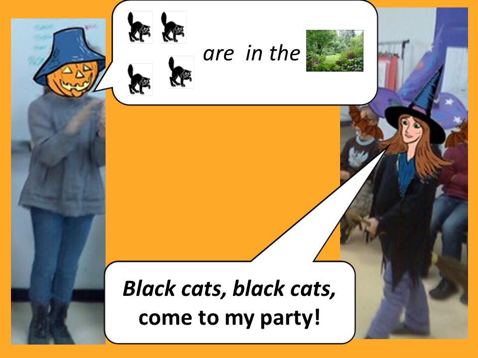 Black cats, black cats, come to my party!