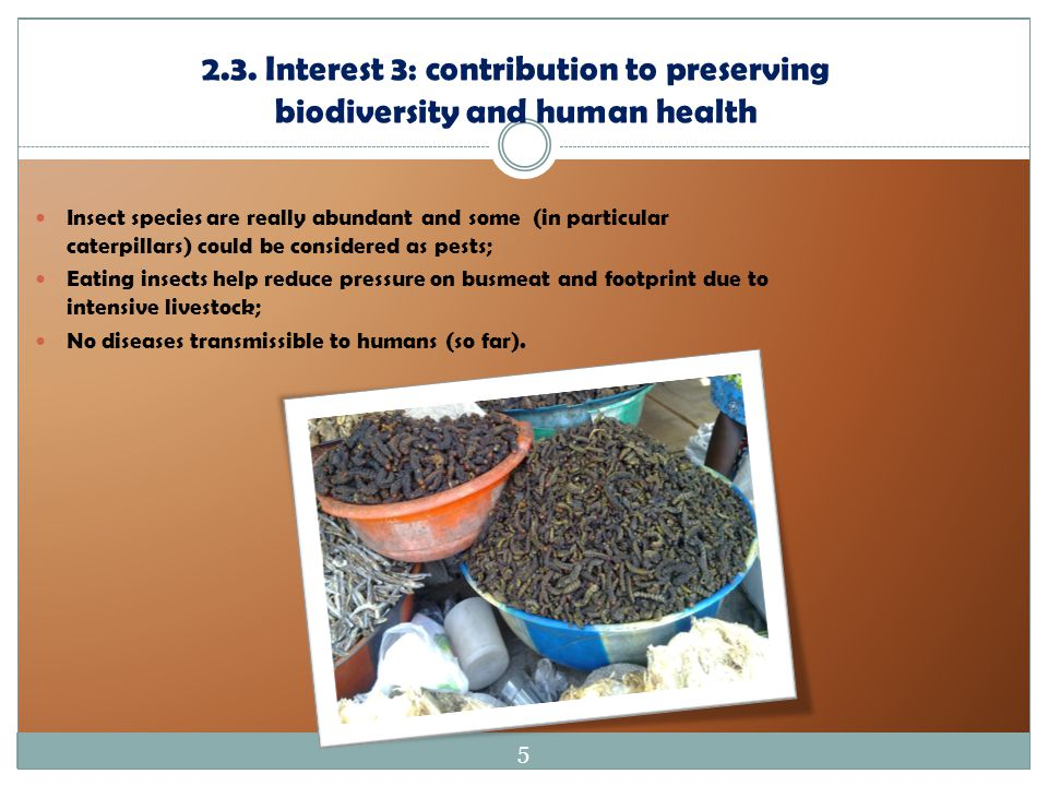 2.3. Interest 3: contribution to preserving biodiversity and human health