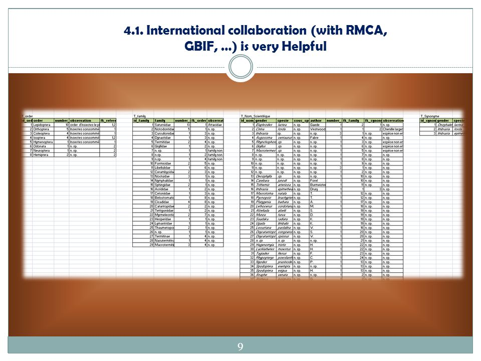 4.1. International collaboration (with RMCA, GBIF, …) is very Helpful