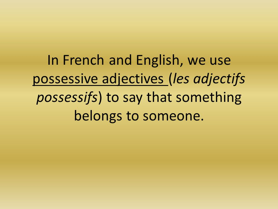 how to use adjectives in french