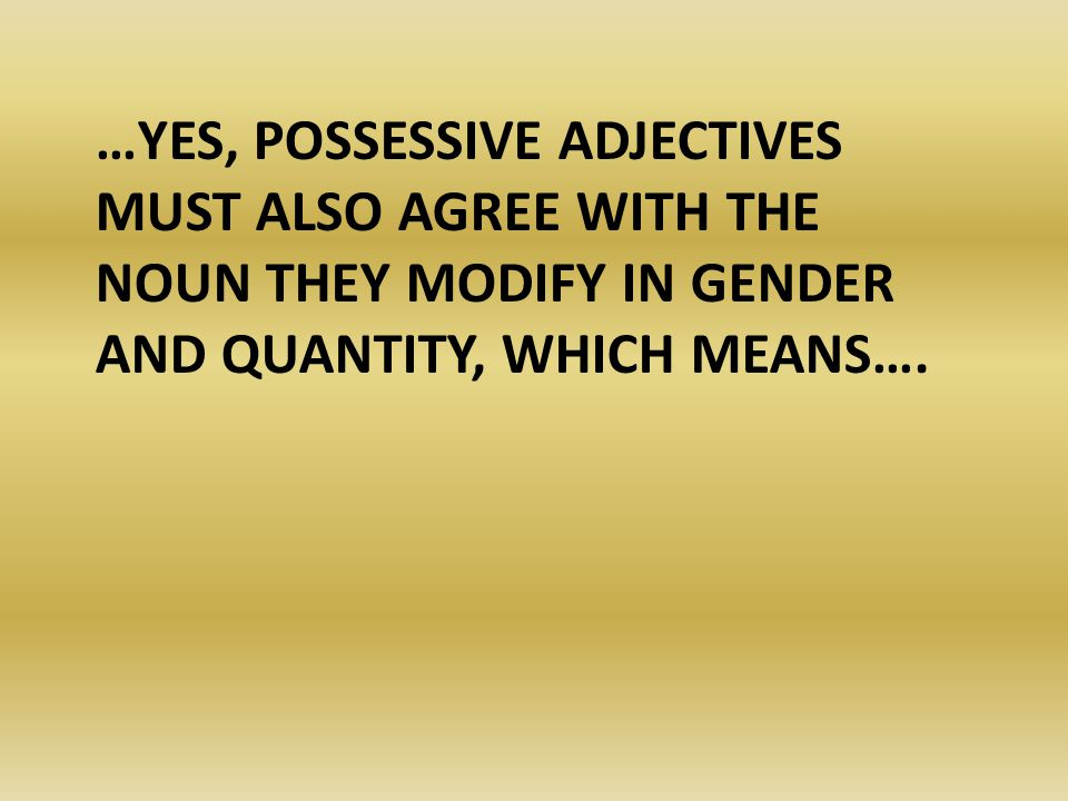…yes, possessive adjectives must also agree with the noun they modify in gender and quantity, which means….