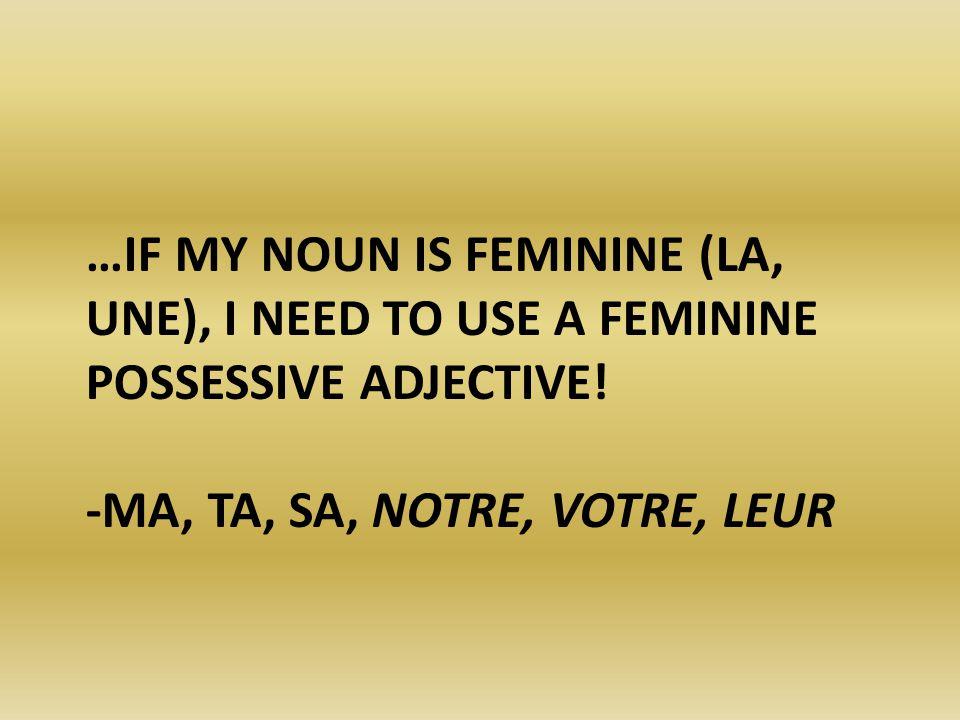 …If my noun is feminine (la, une), I need to use a Feminine possessive adjective.