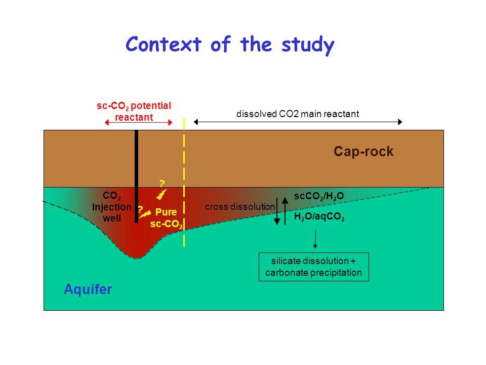 sc-CO2 potential reactant