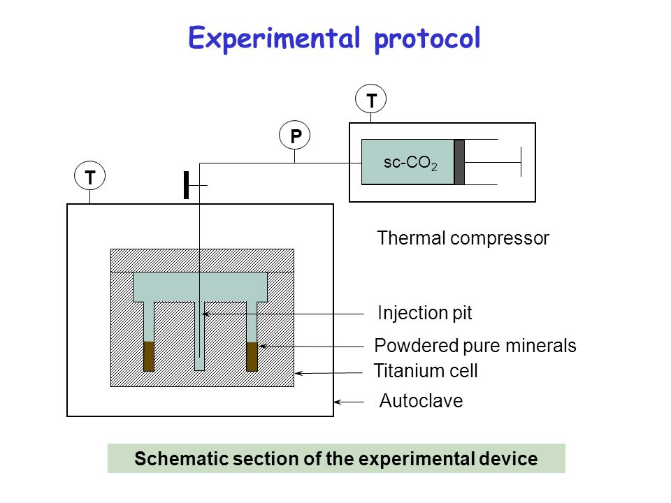 Schematic section of the experimental device