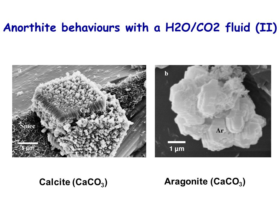 Anorthite behaviours with a H2O/CO2 fluid (II)