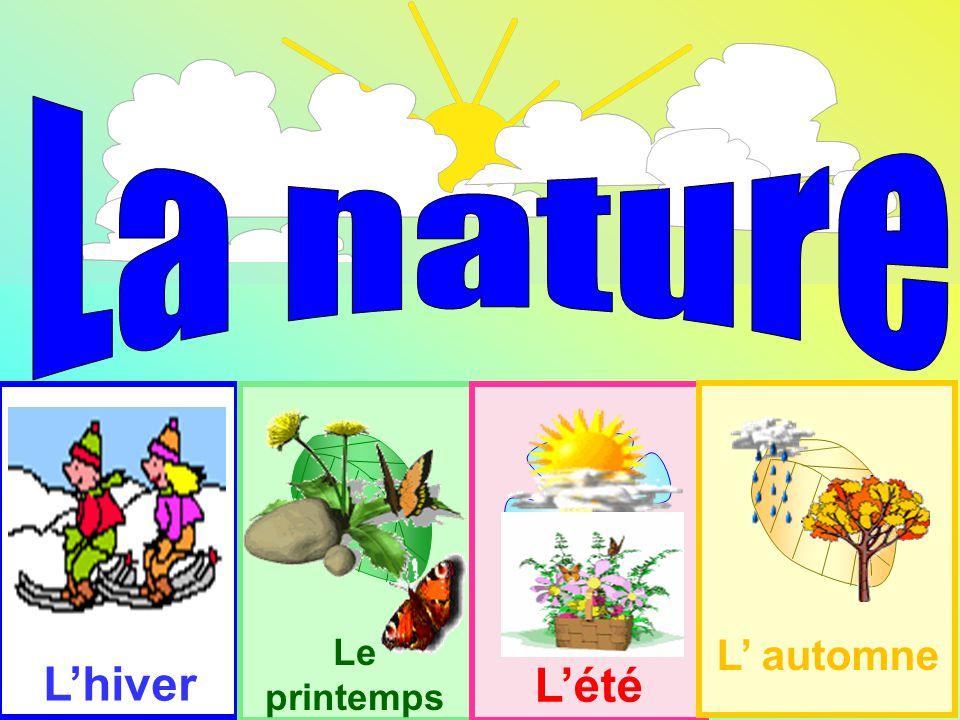La nature L'hiver L'été Le printemps L' automne