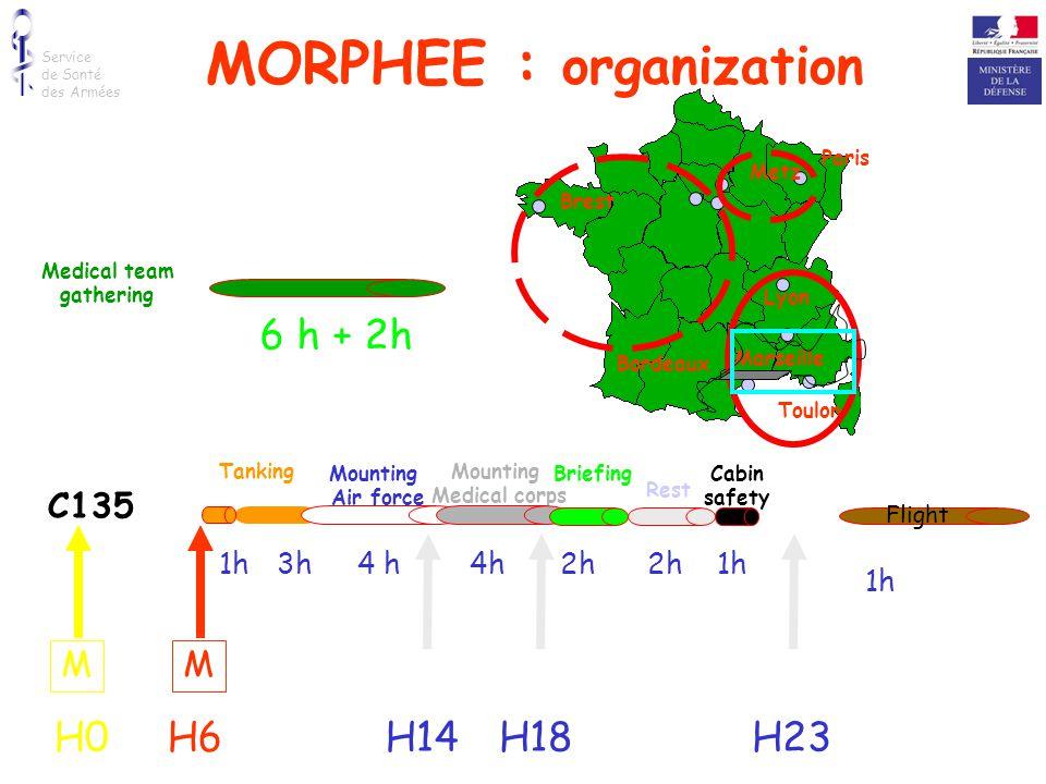 MORPHEE : organization