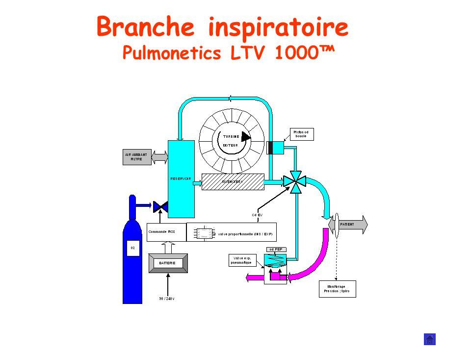 Branche inspiratoire Pulmonetics LTV 1000™