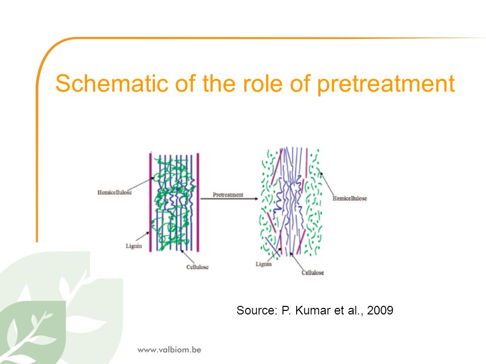 Schematic of the role of pretreatment