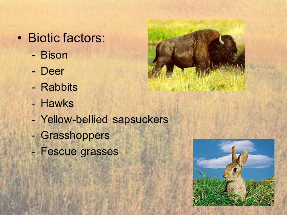 Biotic factors: Bison Deer Rabbits Hawks Yellow-bellied sapsuckers