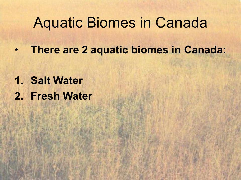 Aquatic Biomes in Canada
