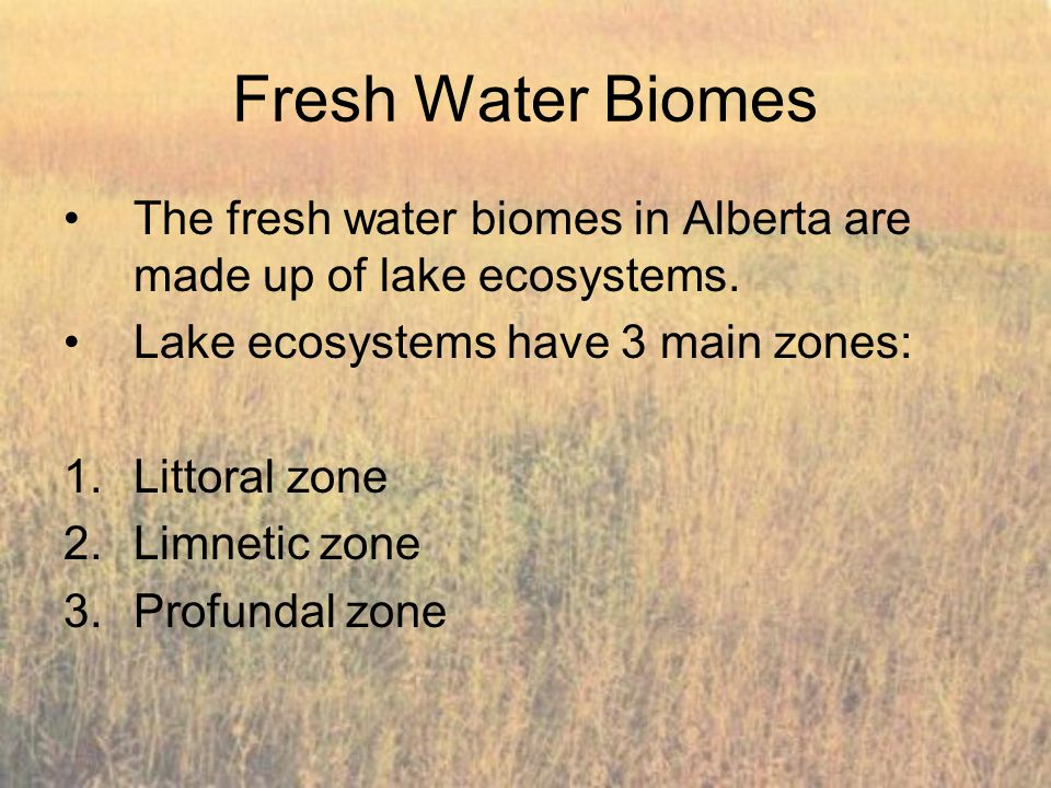 Fresh Water Biomes The fresh water biomes in Alberta are made up of lake ecosystems. Lake ecosystems have 3 main zones: