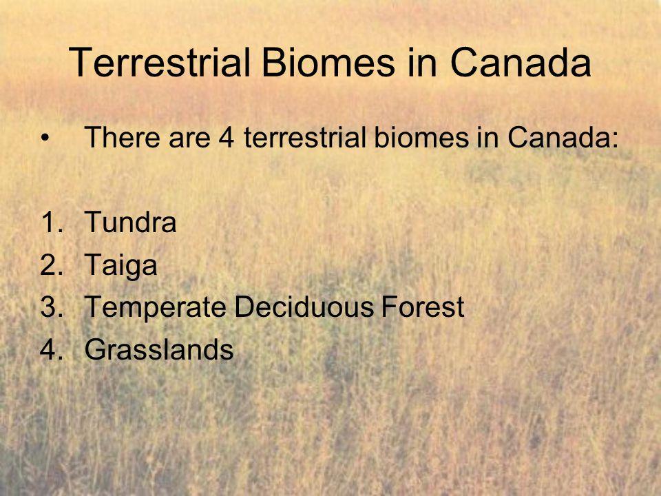 Terrestrial Biomes in Canada