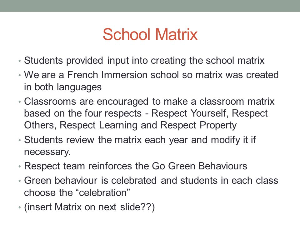School Matrix Students provided input into creating the school matrix