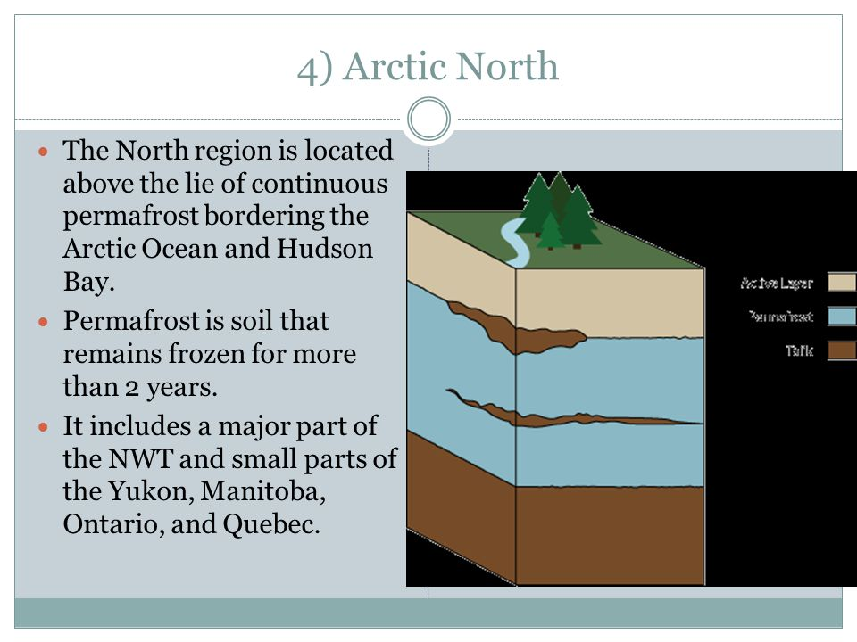 4) Arctic North The North region is located above the lie of continuous permafrost bordering the Arctic Ocean and Hudson Bay.
