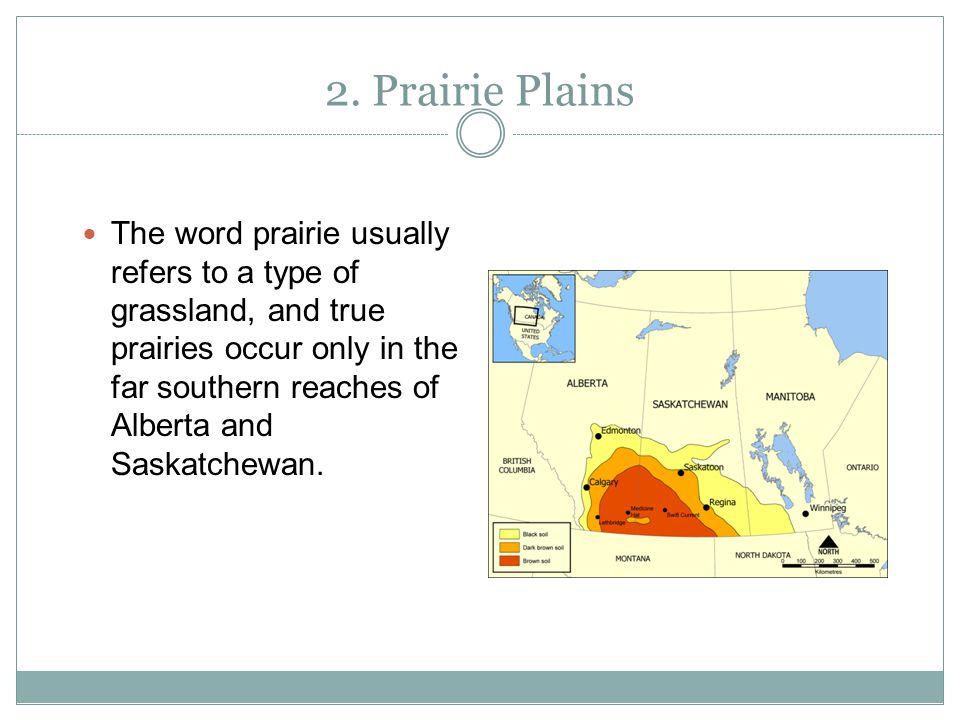 2. Prairie Plains