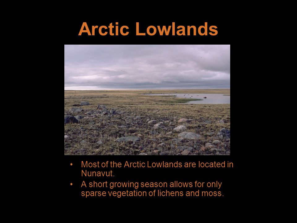 Arctic Lowlands Most of the Arctic Lowlands are located in Nunavut.