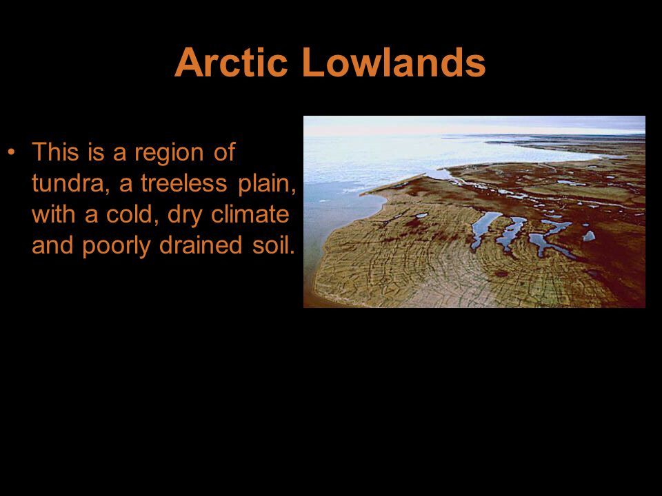 Arctic Lowlands This is a region of tundra, a treeless plain, with a cold, dry climate and poorly drained soil.